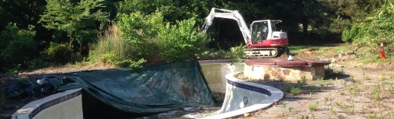 Annapolis Pool Removal